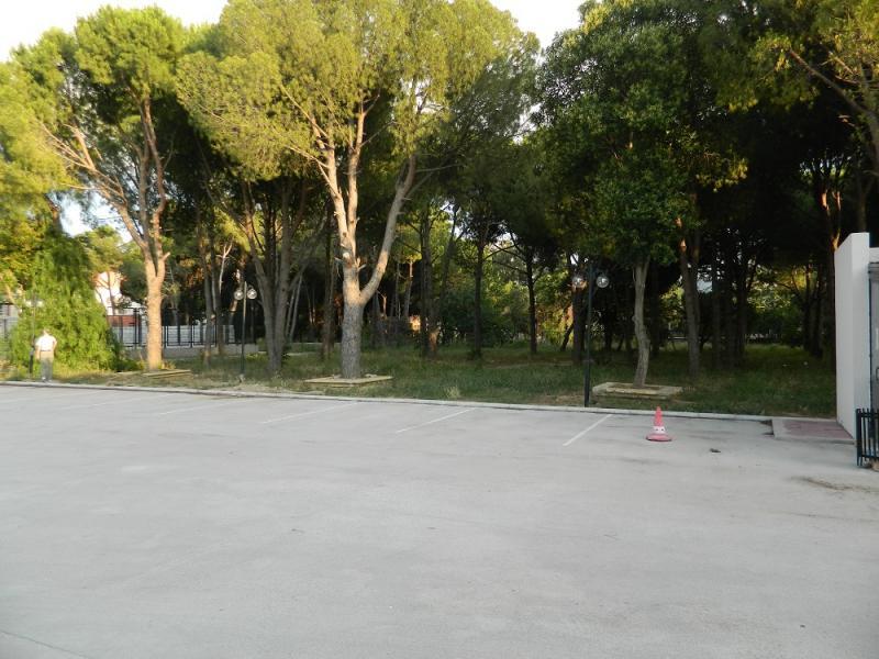 Kampüs Alanı
