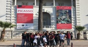 Picasso Sergisi